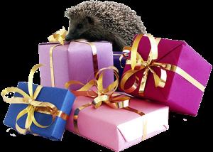 cadeaus-copy-300x214